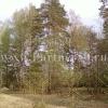 Лесные участки по Симферопольскому шоссе Легчищево